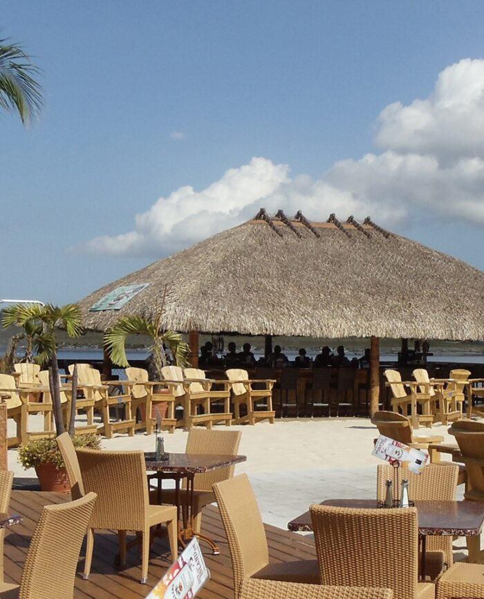 beachbar and palm trees